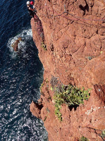 Azurna obala - foto povečava