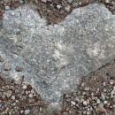 previdno srce na cesti