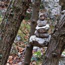 možic zrasel med drevesi