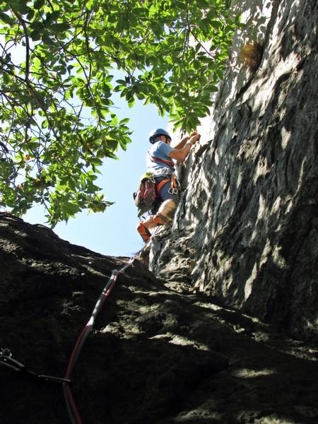 Med kostanji v skalo