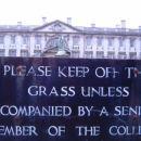 niti podrazno ne it na travo .... edin ce si v spremstvu senjorja!