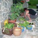 Špela sortira pridelke z najinega vrta.