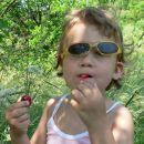 Zalo sem ujel ko je rabutala češnje.