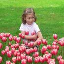 Zalino največje veselje - rožice