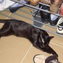 Včasih kako črtico odspim tudi pri čevljih...