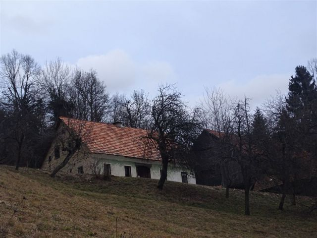 GOLTE (Stari stari vrh, 1569 m) - foto