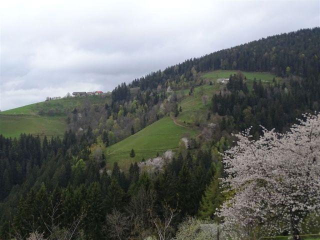 RIBNIŠKA KOČA in ČRNI VRH - foto