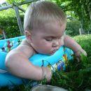 Pulim travico