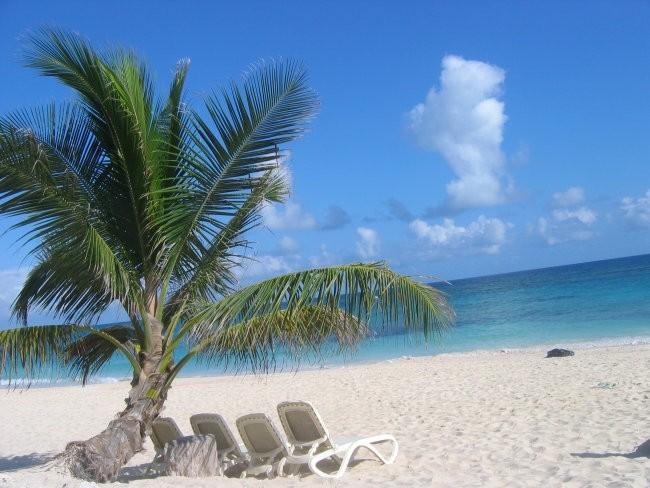 Pesek, sonce, palme in toplo morje