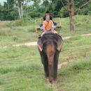 treking s sloni
