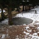 Zamrznjeno jezerce , kjer se poleti verjetno napaja živina.