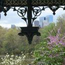 poroka NY Central Park, 29.4.07