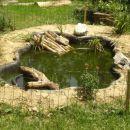 ribnik,kjer prebivajo 3 rdečevratke