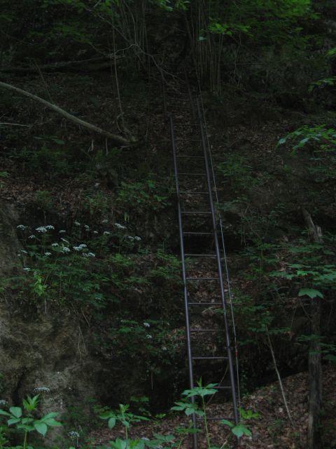 Ob potoku navzgor je prav temno - čez skok po lestvi