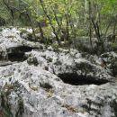 kraški pojav: korita v skalah
