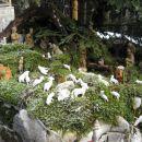 zraven koče jaslice, postavljene na skali