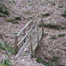 na poti je kar nekaj mostičkov, brvi...