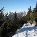 udobna hoja po cesti na belsko planino