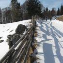 pašniki so ograjeni z lesenimi ograjami