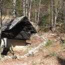 hiška v gozdu