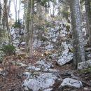 divji svet pod livoldskim vrhom