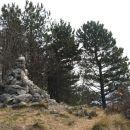 vrh kozleka