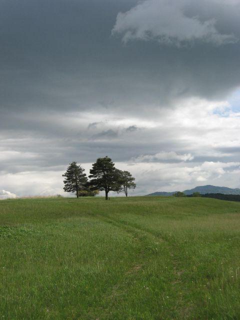 Kočevsko jezero - 6.5.2012 - foto