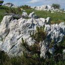 narava naredi najlepši skalnjak