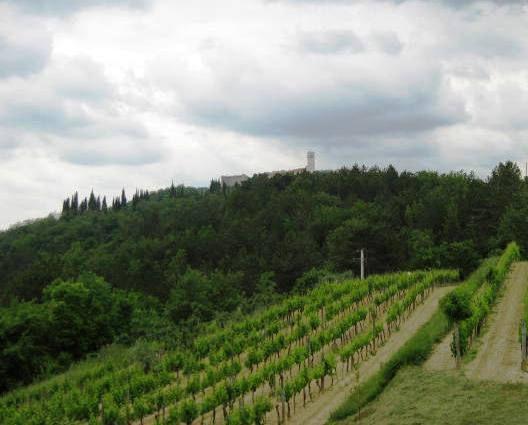 Naslednji cilj je slikovito mestece oprtalj, ki se vidi na vrhu hriba