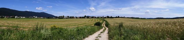 Panorama s poti od pokopališča proti Šalki vasi