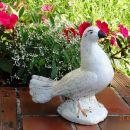 golobica