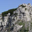 stene lastovca