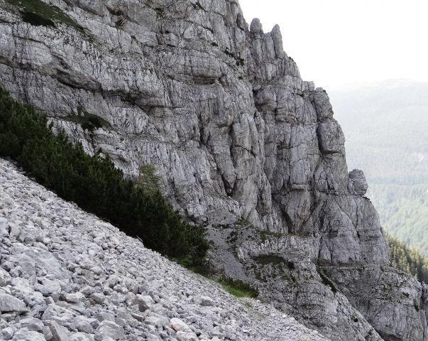 Pogled z melišča