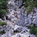 prvi del poti nad strugo Belega potoka
