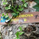 tudi oznaka za slovensko jakobovo pot je skoraj prekrita