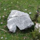 velika planina 10.8.2012 - ogromen, kakih 100 kg