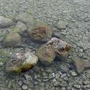 troje src v bohinjskem jezeru, 21.8.2013