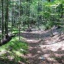v zgornjem delu doline Vrat voda izgine... prijetna stezica po gozdu