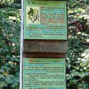 eden od 19-ih informativnih stebrov ob poti