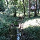 sredi gozdne jase je