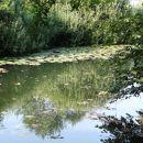reka rinža
