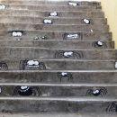 simpatične stopnice