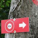 le kaj označuje tale oznaka? pot XIV.-te divizije?