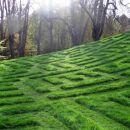 umetniško pokošen travnik