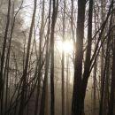 sonček se počasi prebija...