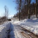 po spluženi gozdni cesti