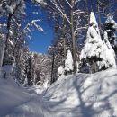 snega je čedalje več