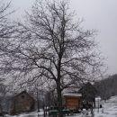 kmetija s kozolcem in čebelnjakom