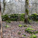 dolga obzidja ob poti ... ograjeni pašniki ali kaj podobnega?