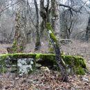 betonirani podstavki v vasi pugled-čemu so služili ne vem